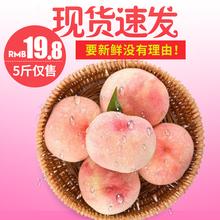 【超值5斤】现摘新鲜脆甜水蜜桃