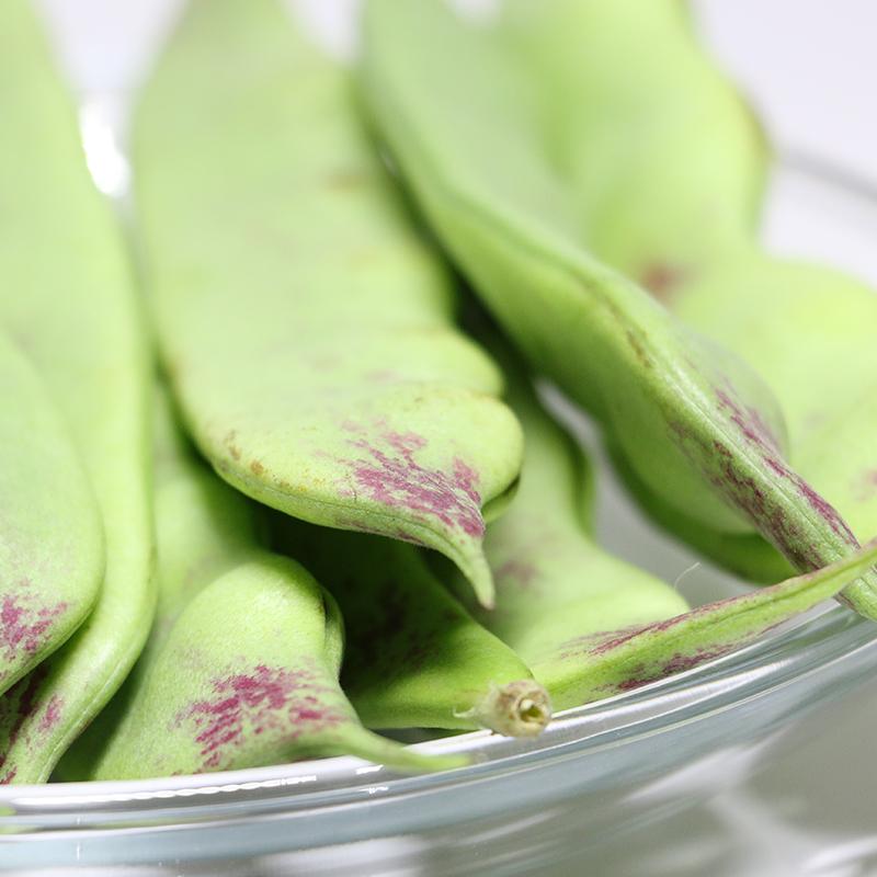 东北豆角一点红面豆角蔬菜青菜新鲜5斤宽豆角特产油豆角开锅烂