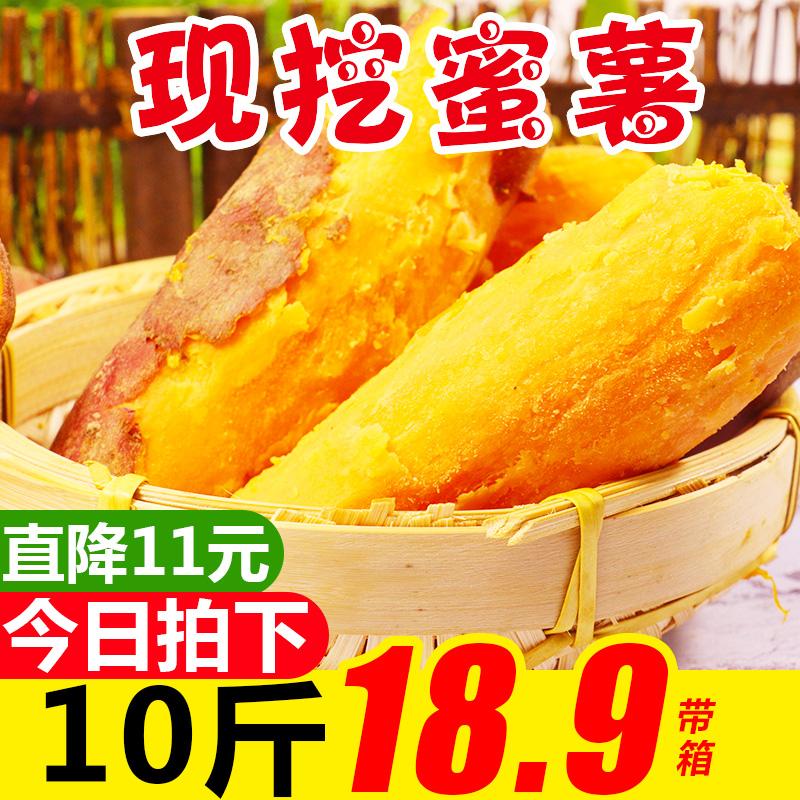 农家红薯10斤带箱应季蔬菜水果小香紫番蜜薯烟薯番薯5批发包邮限7000张券