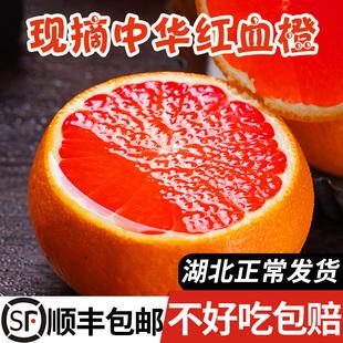 助力湖北顺丰血橙新鲜水果秭归中华红橙当季红心橙子整箱斤大果10