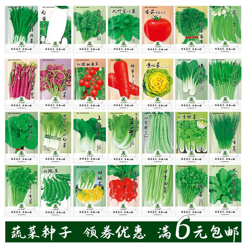 蔬菜种子盆栽阳台绿植物室内外四季农家番茄白萝卜生菠青香韭菜籽