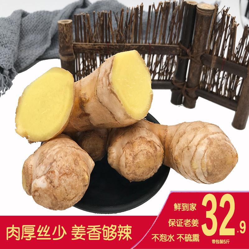 倍智养新鲜生姜山东大姜黄姜5斤老姜母月子姜猪脚姜配料调料