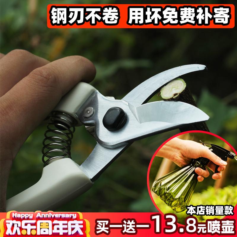 园林园艺家用修花插花蔬果修剪果剪