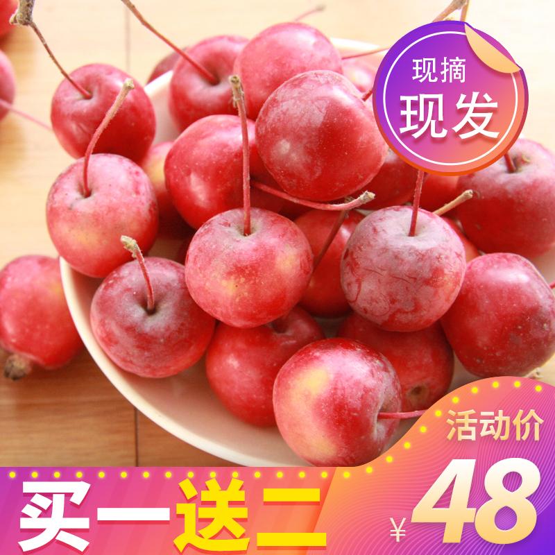海棠果新鲜水果东北花红果海红果樱桃小苹果酸甜小脆稀有当季箱。