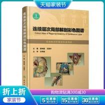 现货连续层次局部解剖彩色图谱段坤昌王振宇编人民卫生出版社