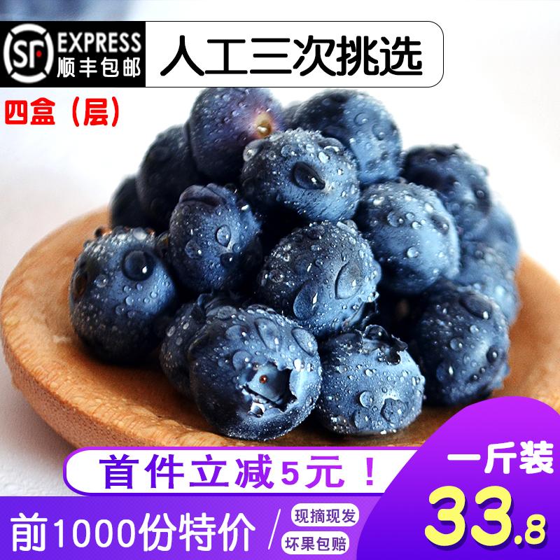蓝莓鲜果500g 新鲜大果当季孕妇现摘水果4盒装顺丰