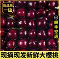 顺丰大樱桃一级新鲜水果包邮山东国产美早车厘子3斤精品大连孕妇5