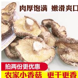 AA香菇干货200g新货蘑菇冬菇金钱菇菌菇农家特产