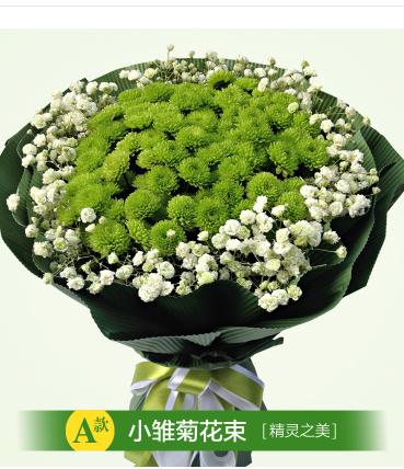 Cake distribution rose in bajiaojin Street flower shop of Lejie 188 Old City District, Daobei railway station, Xigong District, Luoyang