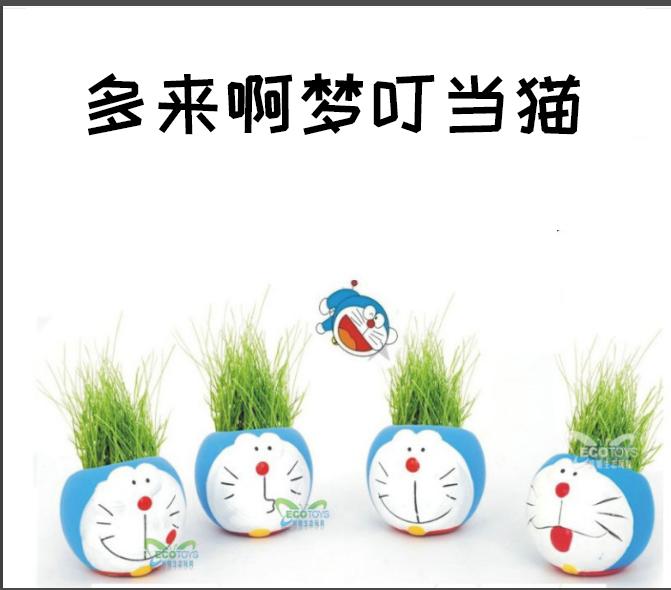 创意礼物迷你植物DIY玩具青草种植卡通奶牛表情盆栽工艺桌面摆件