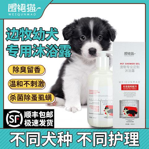 边境牧羊犬幼犬专用狗狗沐浴露除臭留香止痒宠物洗澡用品