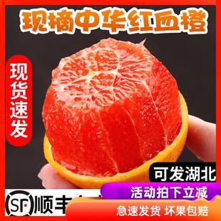 助力湖北 顺丰血橙新鲜水果秭归橙子9斤中华红橙当季整箱10