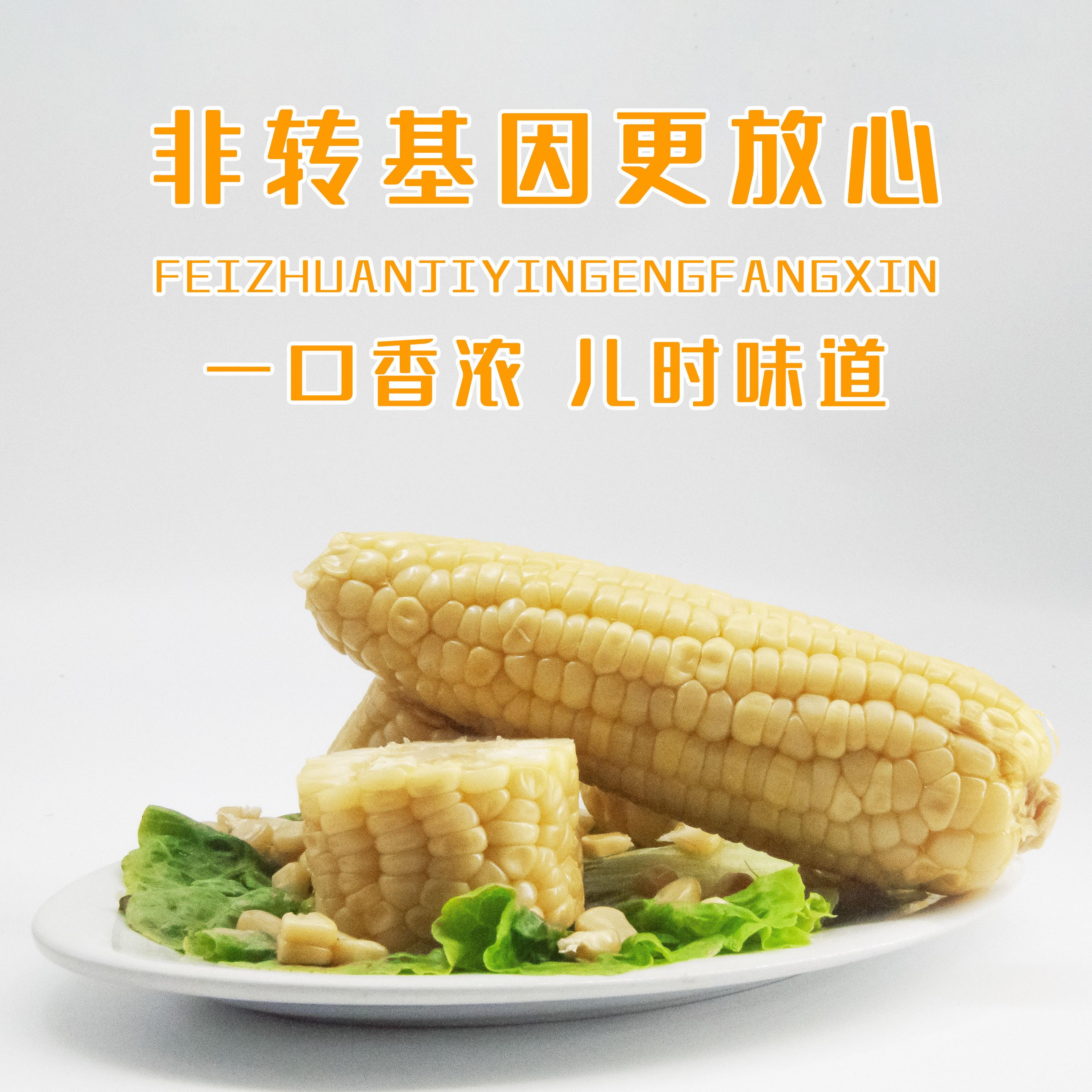 新鲜甜糯玉米粘玉米10农家自种玉米