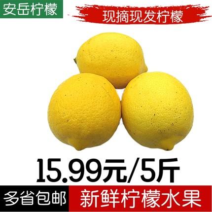 安岳柠檬5斤装二三级新鲜水果柠檬皮博多汁黄柠檬可留言大小