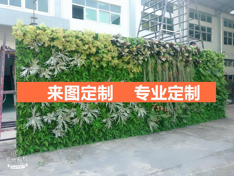 工程定制仿真仿真植物墙定做承接人造仿真青苔草草墙