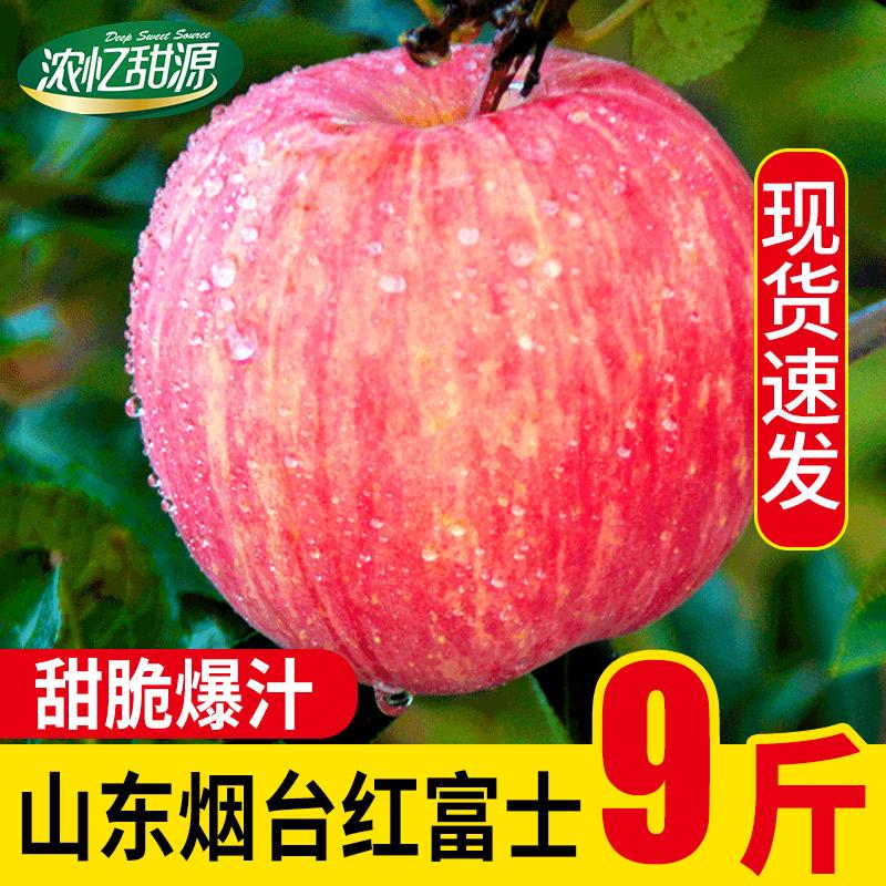 【5斤】烟台苹果新鲜红富士整箱