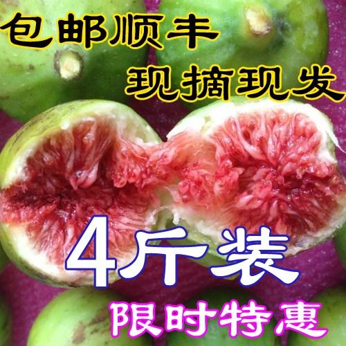 现货 顺丰 新鲜无花果威海青皮鲜果孕妇应季特产水果现摘现发4斤券后59.80元