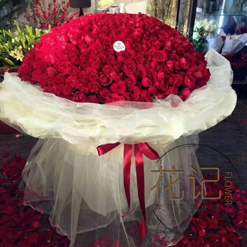 Luoyang flower old city Xigong Jianxi 999 / 1314 red and white powder champagne blue rose flowers City Express