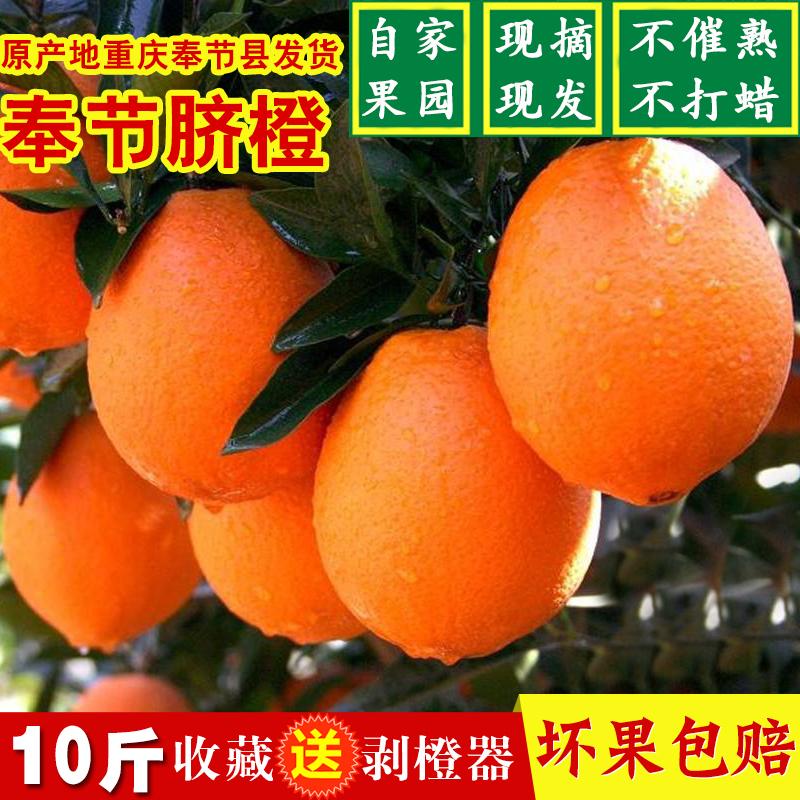 正宗重庆奉节脐橙伦晚长虹纽荷尔现摘现发甜夏橙子新鲜水果10斤装