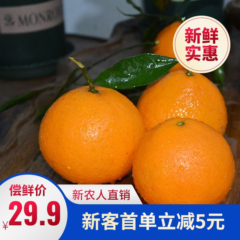Sichuan Qingjian citrus selected big fruit Renshou producing area direct supply of 5 kg / 10 kg fresh package mail non unknown fire navel orange