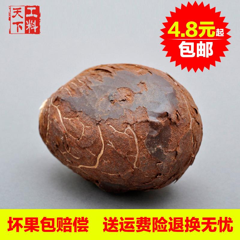 工料天下把玩优质白象牙果原料原果手把件大果7-9个一斤厂家直销