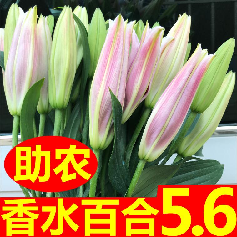 助农鲜花花束云南昆明基地直发香水百合花速递同城家用水养玫瑰花