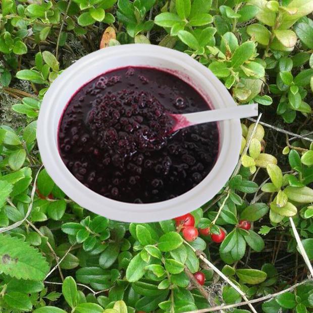 蔓越莓果酿  大兴安岭特产  野生蔓越莓果酿  750克/瓶 1瓶包邮