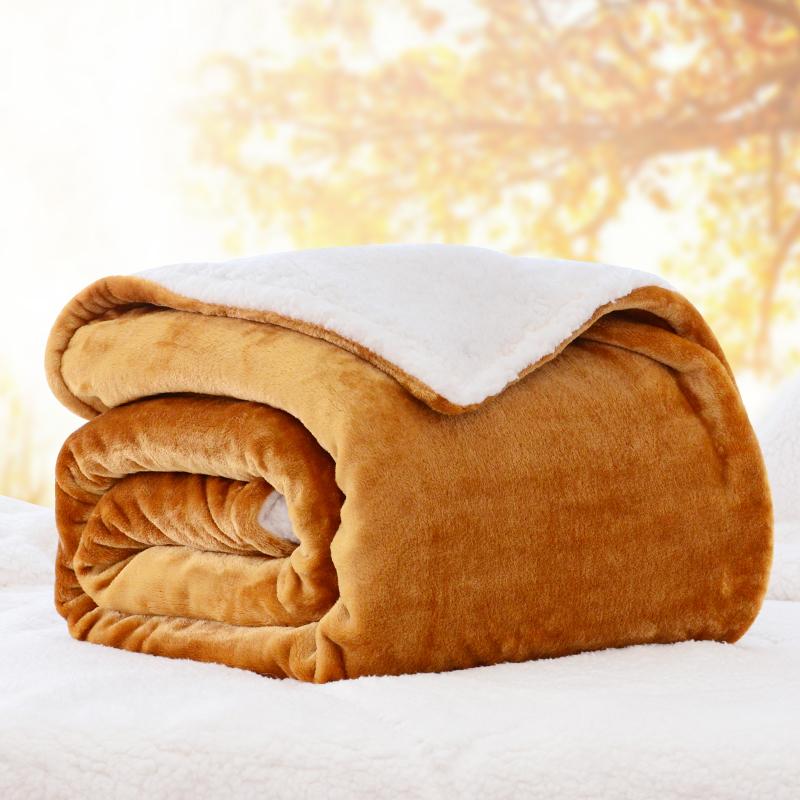 珊瑚绒毯仿羊羔绒毛毯被子加厚保暖双层盖毯秋冬季单人双人毛绒毯