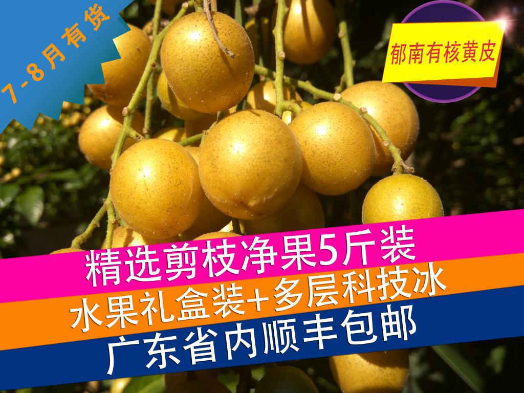 郁南建城本地山黄皮果新鲜水果顺丰空运广东省内包邮5斤现摘现发