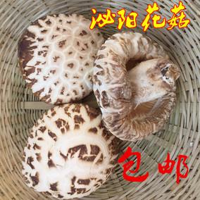 19 500克包邮年泌阳花菇干货
