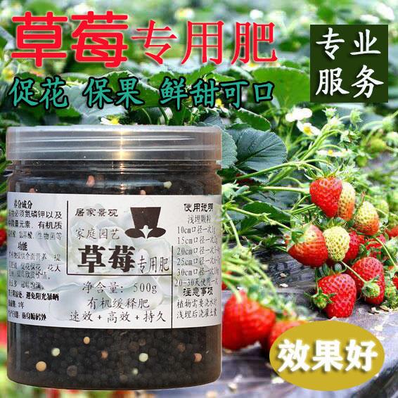 イチゴ花肥専用肥料有機肥料家庭用ブルーベリー盆栽イチゴ肥料