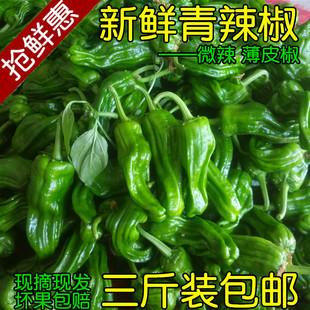 青辣椒新鲜现摘农家自种青椒薄皮椒微辣芜湖椒虎皮椒应季新鲜蔬菜