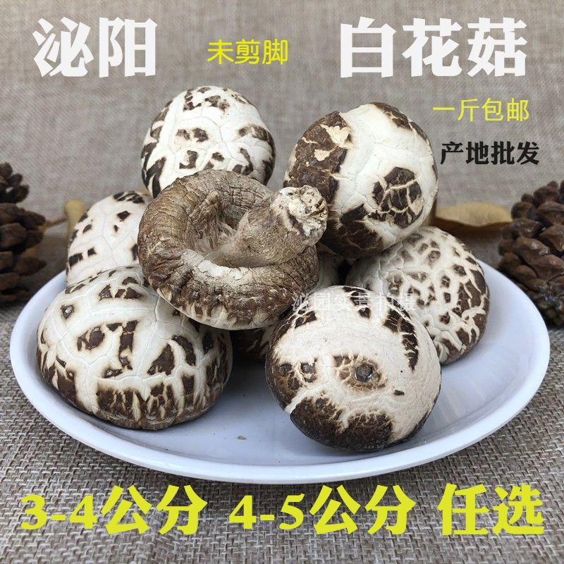 新小白花菇干货未剪脚冬菇香菇蘑菇仿野生椴木500g包邮非东北特产