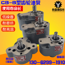 CBB6B10B4B2.5B16B20B25B32B50B63B100B125齒輪泵B40