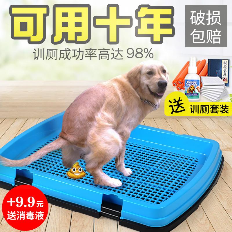 Собака туалет тедди золото волосы затем бассейн большой размер среда крупных собак тянуть фекалии статьи затем писсуар собака фекалии бассейн моча моча бассейн