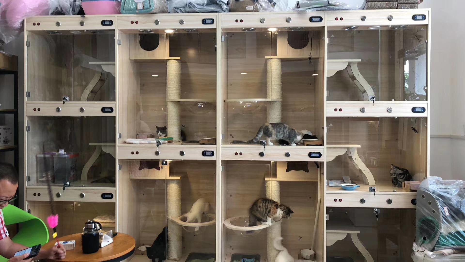 猫屋のオーダーメイド丸太猫舎の家庭用猫かごとトイレペットショップの猫別荘の3階のガラス展示棚