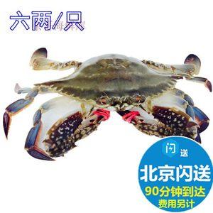 6两鲜活梭子蟹 大连飞蟹公母海螃蟹花盖蟹花蟹海鲜满肉无黄按只卖