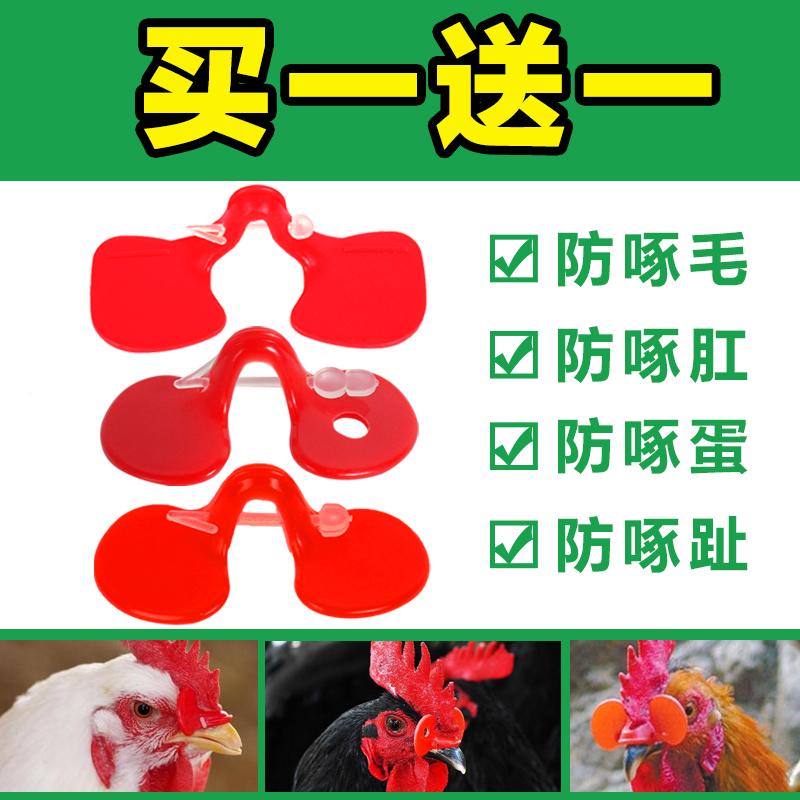 Противо клевать курица очки гора земля цыпленок средний большой количество курица глаз очки петух дикий курица очки поддержка курица оборудование статьи