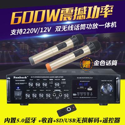 2.0功放机家用 600W发烧友专业舞台大功率收音K歌车载12V蓝牙功放