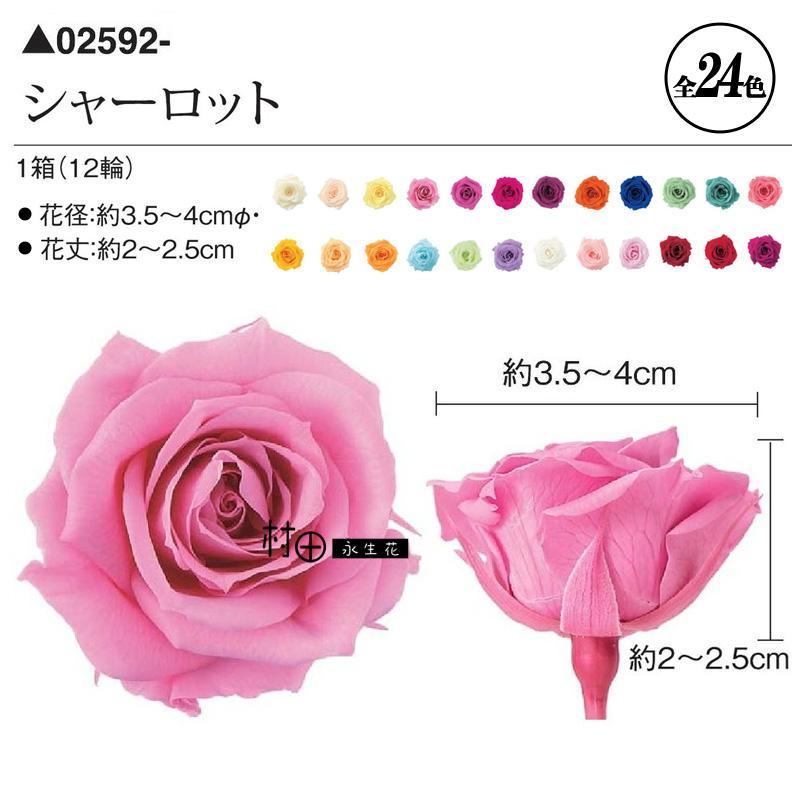 【大地农园】日本进口永生玫瑰多色可选diy礼盒配饰批 发02592