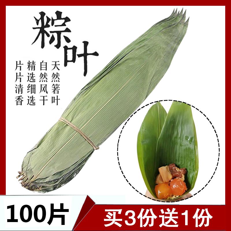 干粽叶包粽子的大粽子叶新鲜纯天然粽叶干粽子叶100张竹棕叶免邮