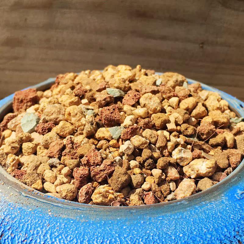 仙女杯专用颗粒土营养土生根控型专用土进口高级多肉土悠悠多肉馆