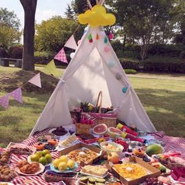 户外野餐用网红ins小帐篷儿童宝宝春游帐篷床家用室内睡觉可折叠图片