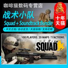 STEAM PC正版 Squad 战术小队 行动小组 国区全球版