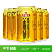 6罐装酒水易拉罐匠心营造小麦啤酒酷爽珠江啤酒10度金麦穗330ml