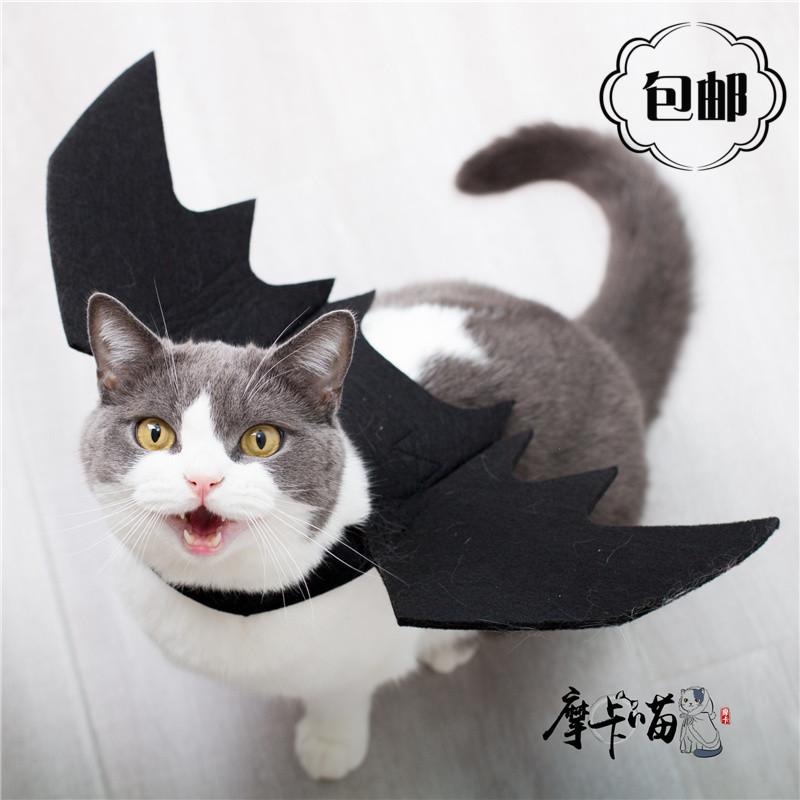 万圣节宠物衣服猫咪狗狗黑色蝙蝠翅膀变身装COS 搞怪节日服饰