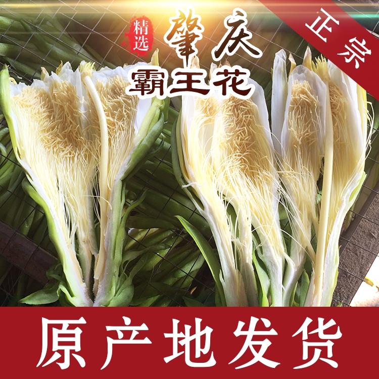 新花肇庆特产霸王花500g包邮干货特级广东煲汤材料剑花农家土特产