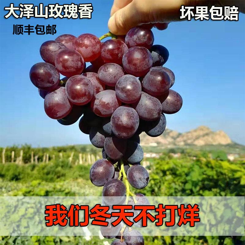 山东大泽山葡萄玫瑰香新鲜孕妇水果4斤顺丰青岛平度玫瑰葡萄