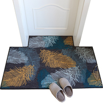 Cushion Door mat living room door home water Suction Hall Nordic Xuan Guan door rubbing earth pad carpet mat
