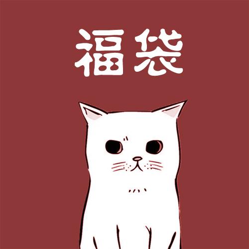 【大猫猫18年感恩回馈】free people 春夏季福袋 超值~只限老客拍